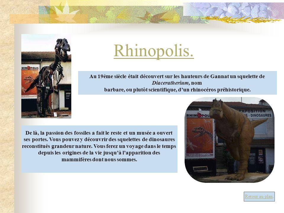 Rhinopolis.Au 19ème siècle était découvert sur les hauteurs de Gannat un squelette de. Diaceratherium, nom.
