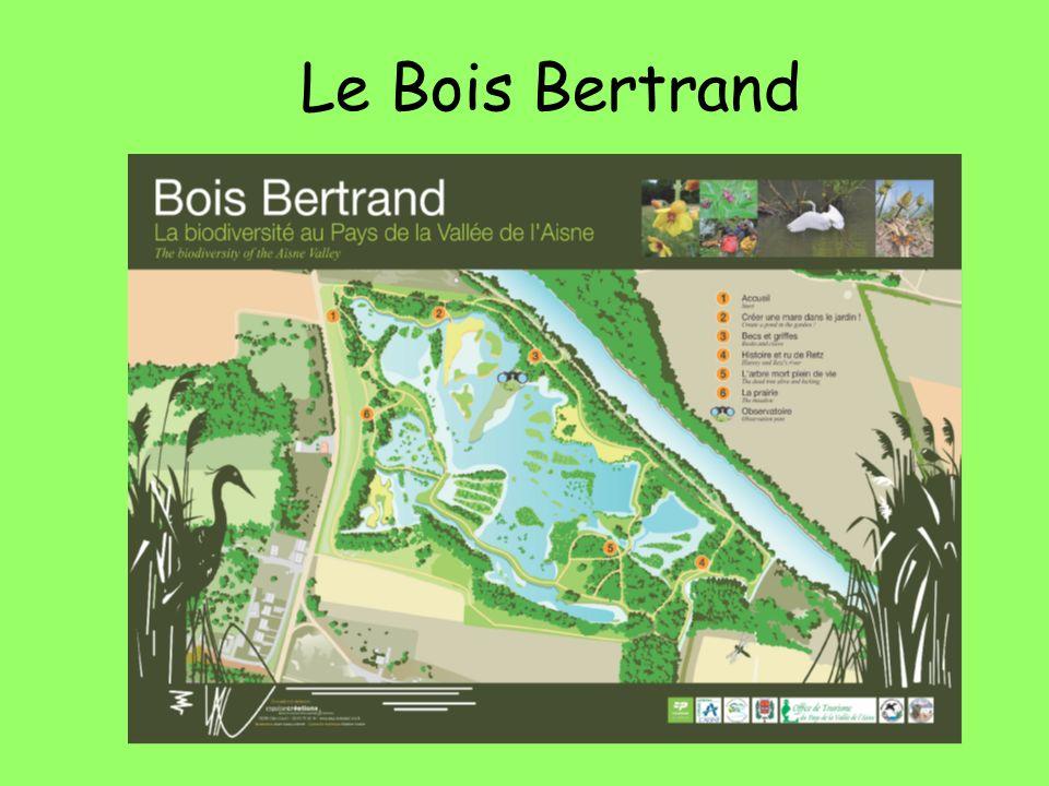 Le Bois Bertrand