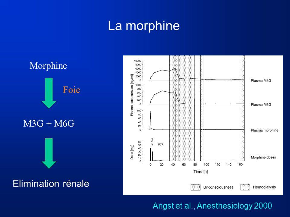 La morphine Morphine Foie M3G + M6G Elimination rénale