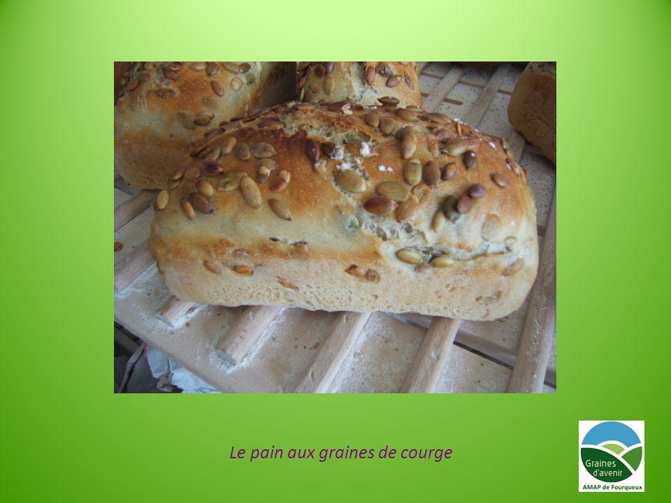 Le pain aux graines de courge