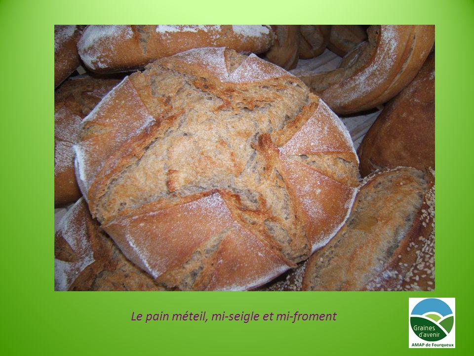 Le pain méteil, mi-seigle et mi-froment