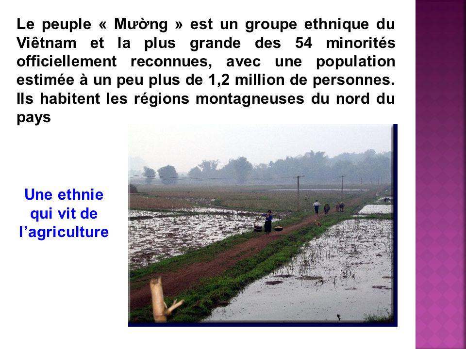 Une ethnie qui vit de l'agriculture