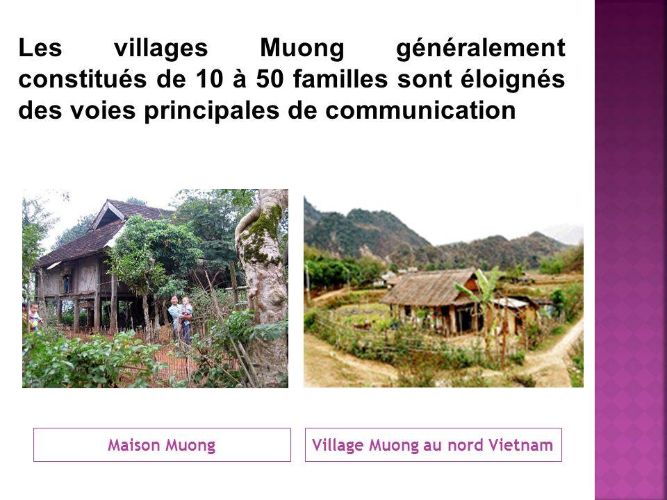Village Muong au nord Vietnam