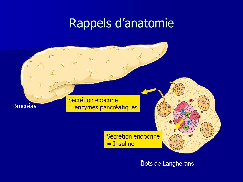 Rappels d'anatomie Sécrétion exocrine = enzymes pancréatiques Pancréas