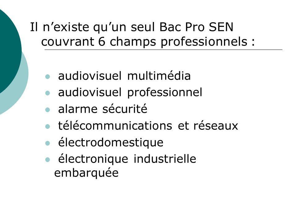 Il n'existe qu'un seul Bac Pro SEN couvrant 6 champs professionnels :