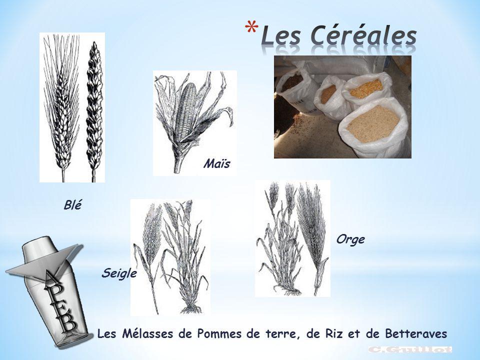 Les Mélasses de Pommes de terre, de Riz et de Betteraves