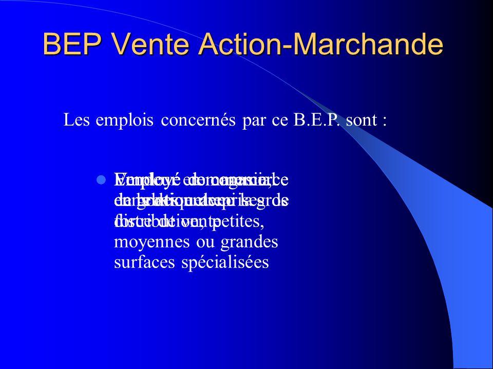 BEP Vente Action-Marchande