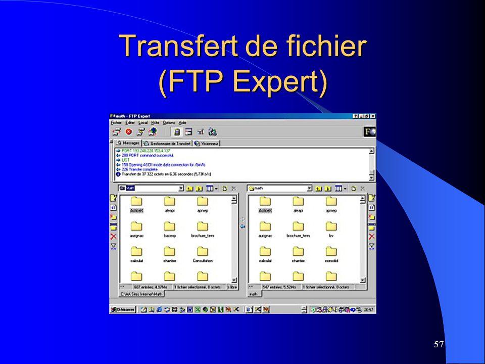 Transfert de fichier (FTP Expert)