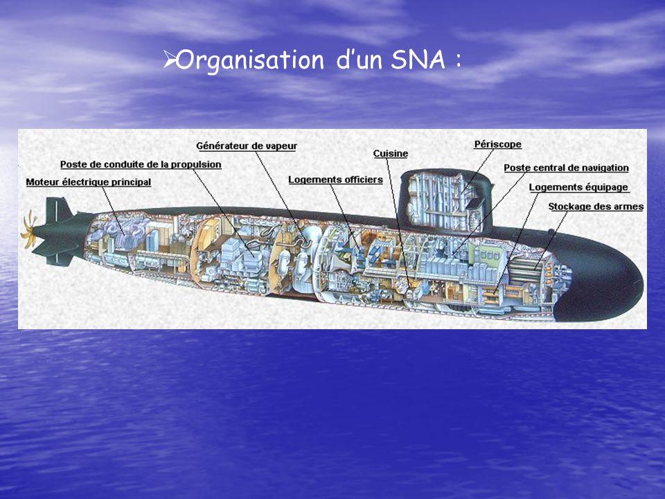 Organisation d'un SNA :