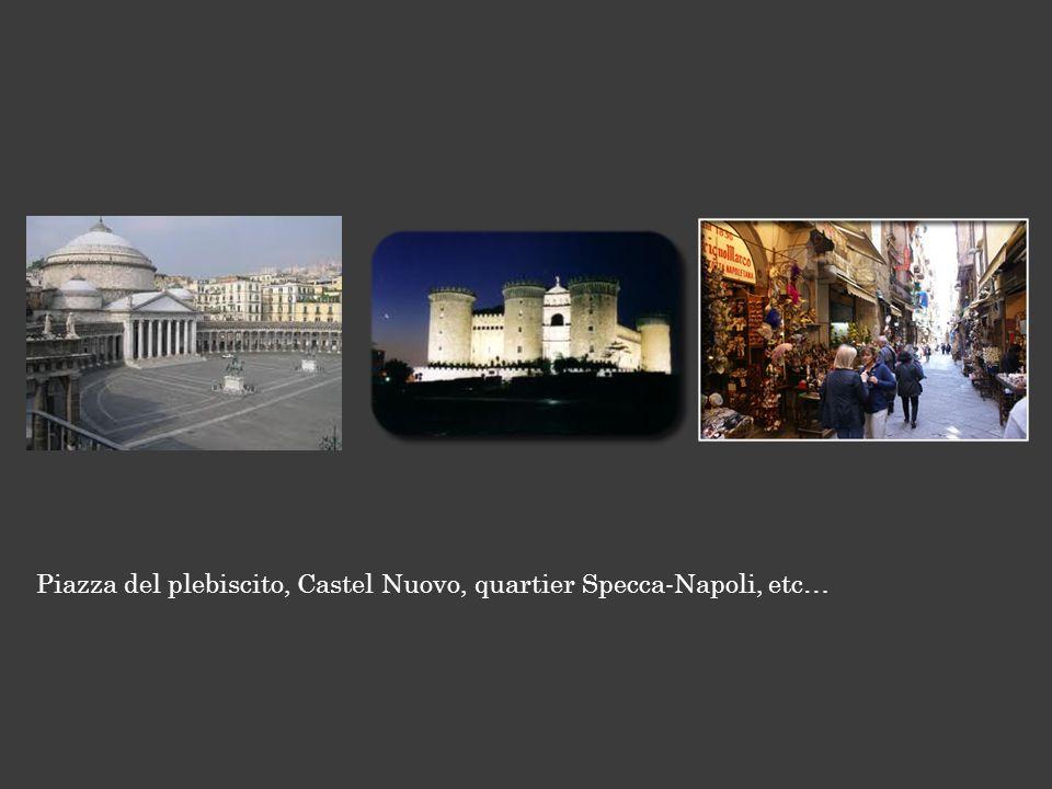 Piazza del plebiscito, Castel Nuovo, quartier Specca-Napoli, etc…
