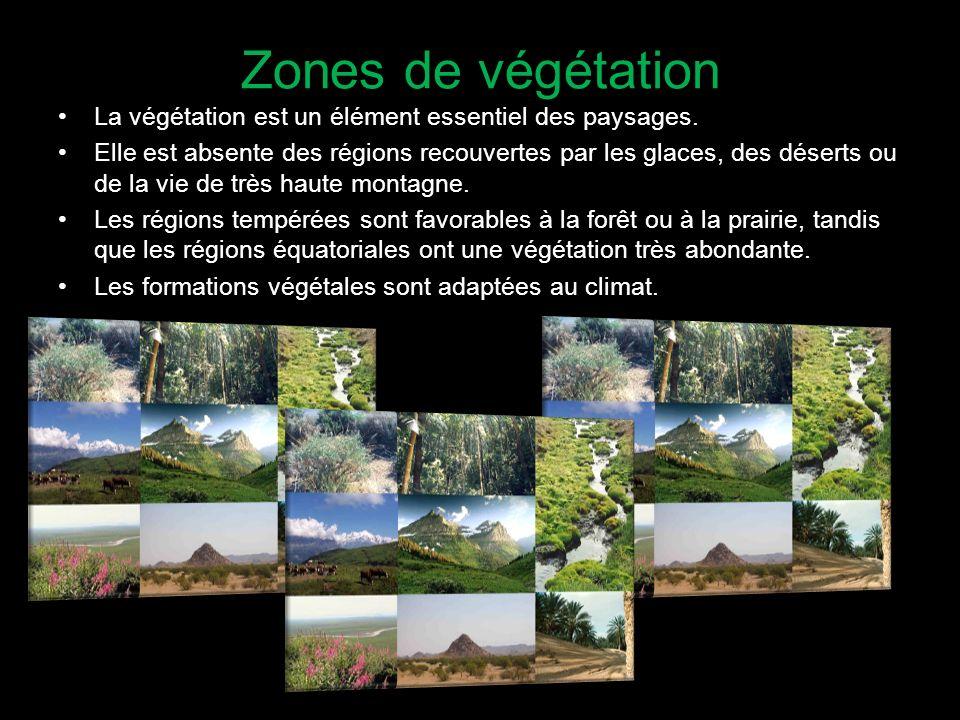 Zones de végétation La végétation est un élément essentiel des paysages.