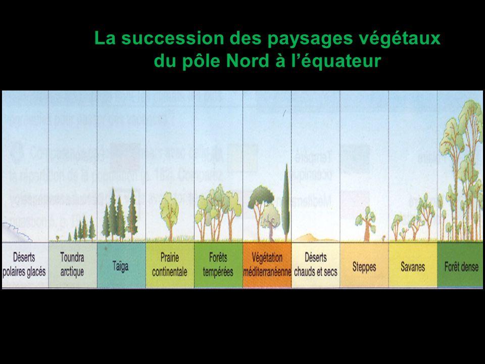 La succession des paysages végétaux du pôle Nord à l'équateur