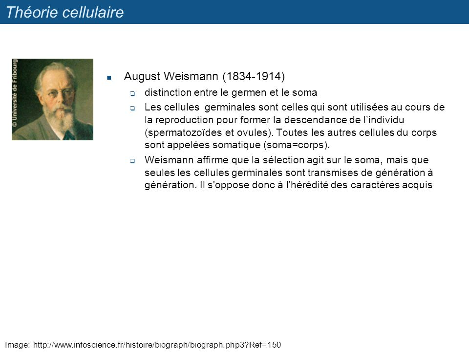 Théorie cellulaire August Weismann (1834-1914)