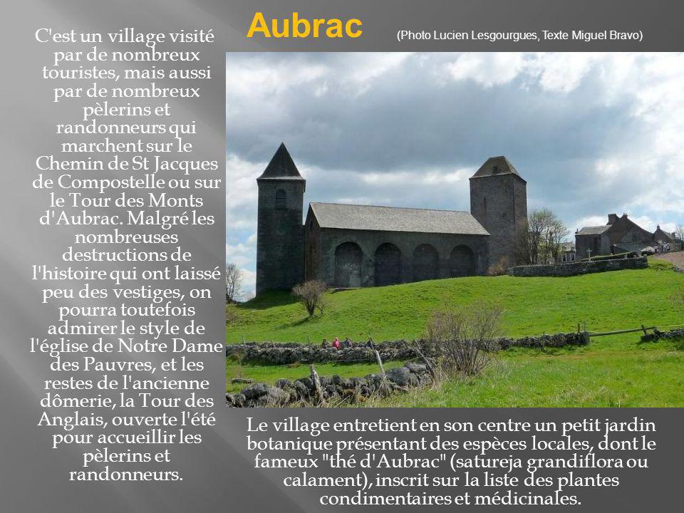 Aubrac (Photo Lucien Lesgourgues, Texte Miguel Bravo)