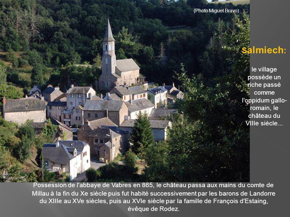 (Photo Miguel Bravo) Salmiech: le village possède un riche passé comme l oppidum gallo-romain, le château du VIIIe siècle...