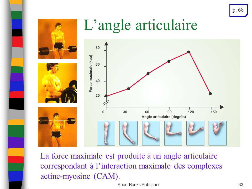 p. 68 L'angle articulaire.