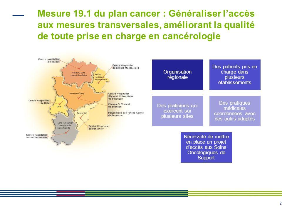 Mesure 19.1 du plan cancer : Généraliser l'accès aux mesures transversales, améliorant la qualité de toute prise en charge en cancérologie