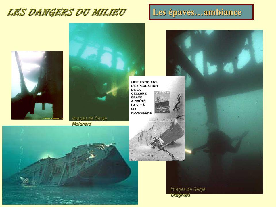 LES DANGERS DU MILIEU Les épaves…ambiance Images de Serge Moignard