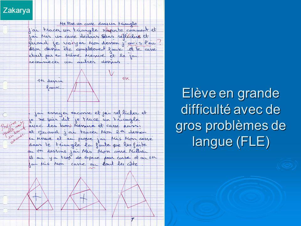 Elève en grande difficulté avec de gros problèmes de langue (FLE)