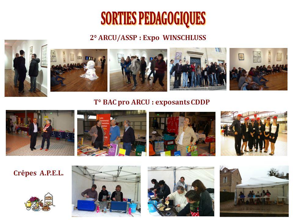 2° ARCU/ASSP : Expo WINSCHLUSS T° BAC pro ARCU : exposants CDDP