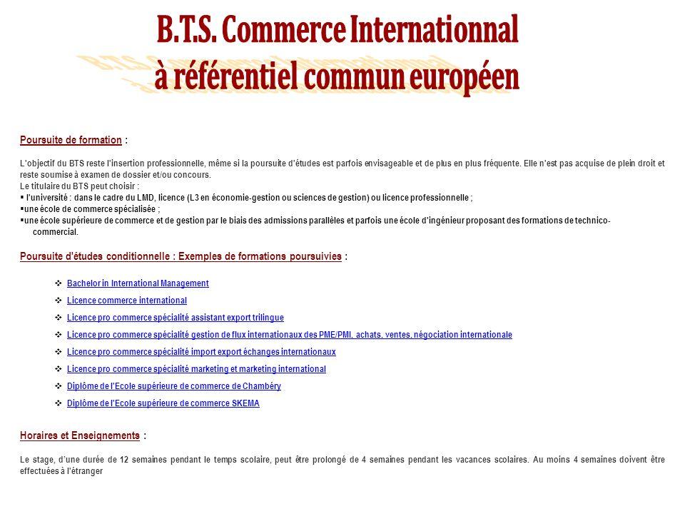 B.T.S. Commerce Internationnal à référentiel commun européen