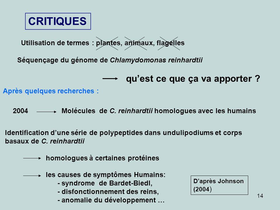 CRITIQUES Utilisation de termes : plantes, animaux, flagelles