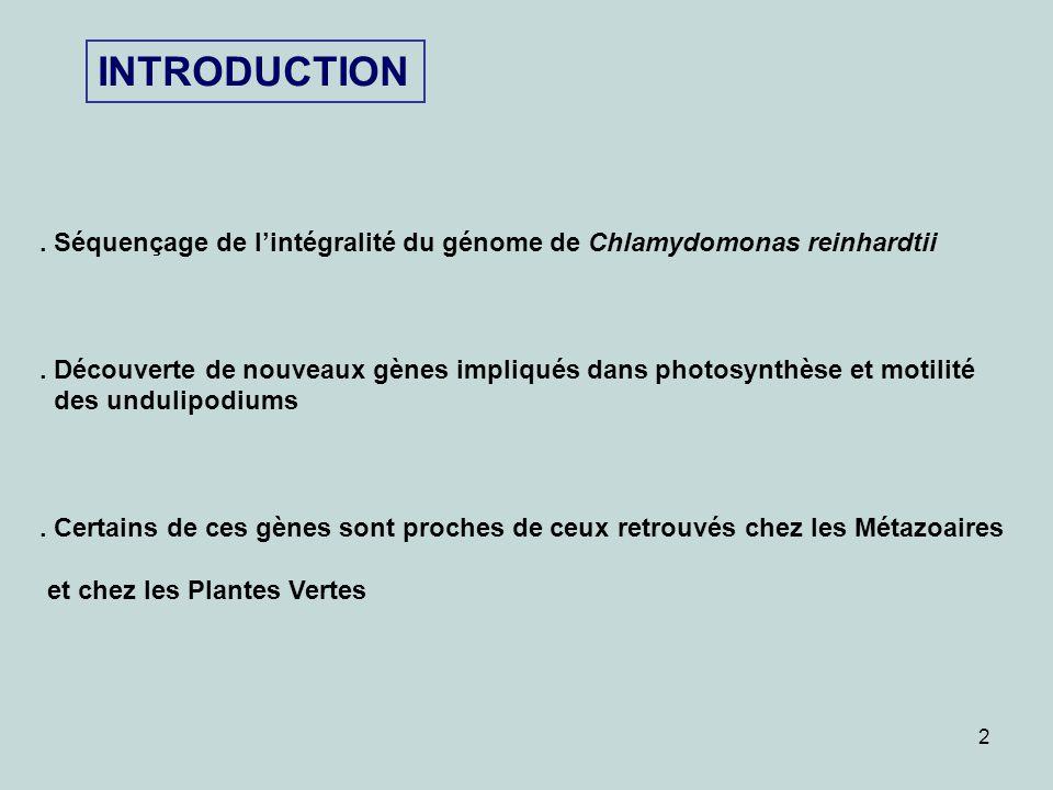 INTRODUCTION . Séquençage de l'intégralité du génome de Chlamydomonas reinhardtii.