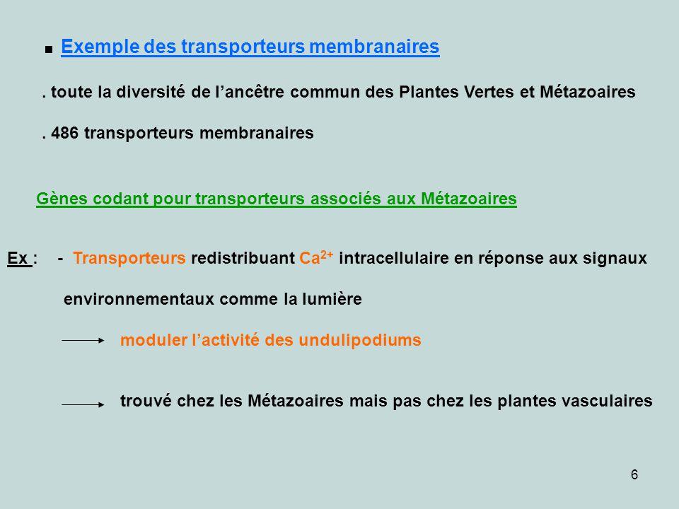 . Exemple des transporteurs membranaires