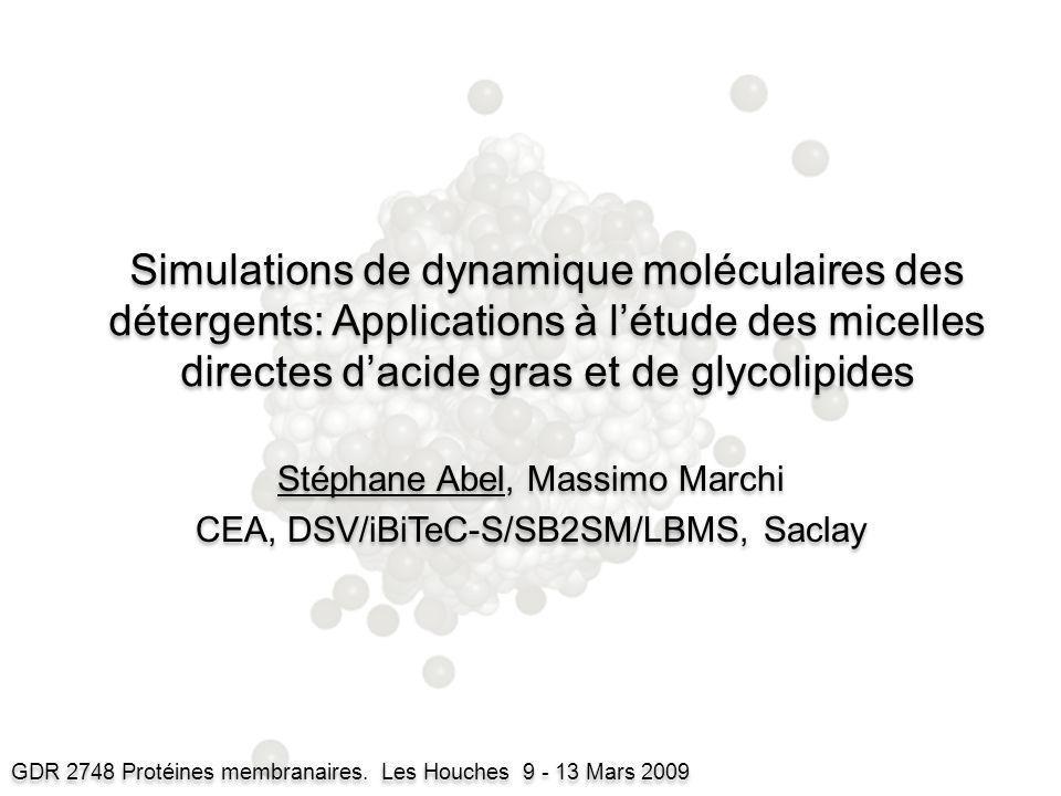 Stéphane Abel, Massimo Marchi CEA, DSV/iBiTeC-S/SB2SM/LBMS, Saclay