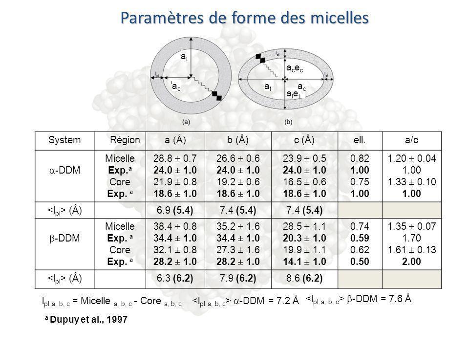 Paramètres de forme des micelles