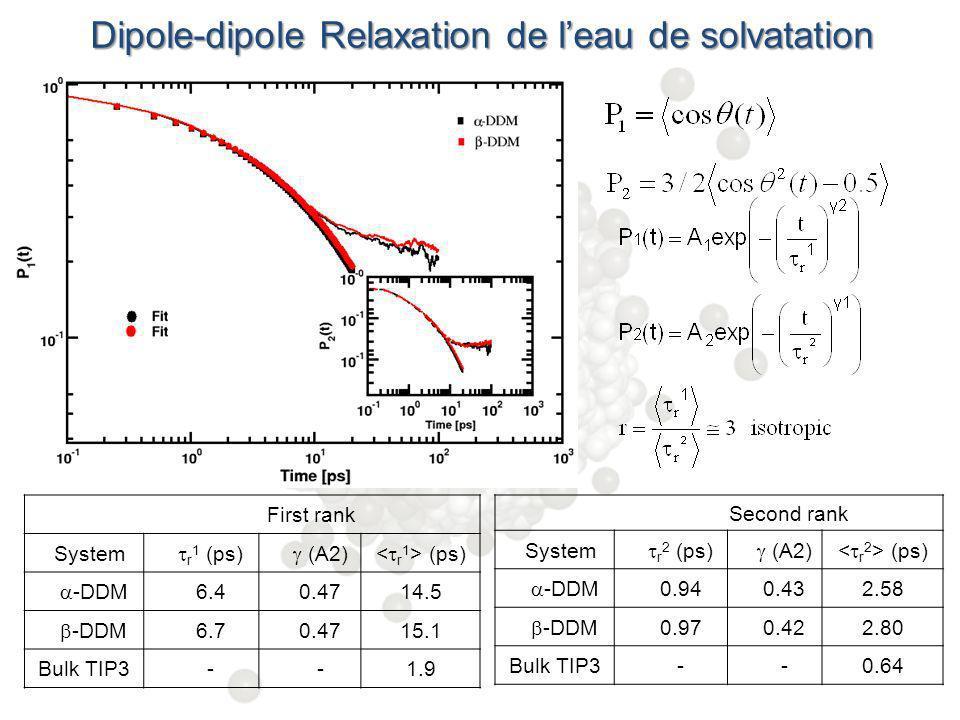 Dipole-dipole Relaxation de l'eau de solvatation