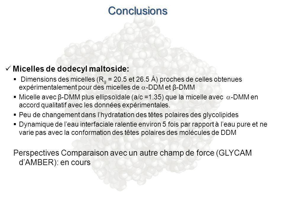 Conclusions Micelles de dodecyl maltoside: