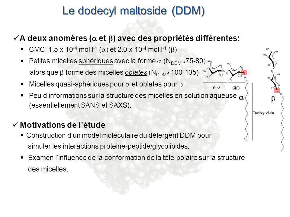 Le dodecyl maltoside (DDM)