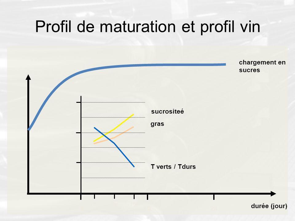 Profil de maturation et profil vin