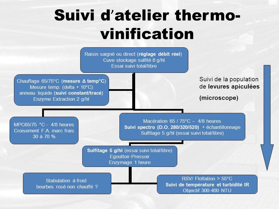Suivi d'atelier thermo-vinification