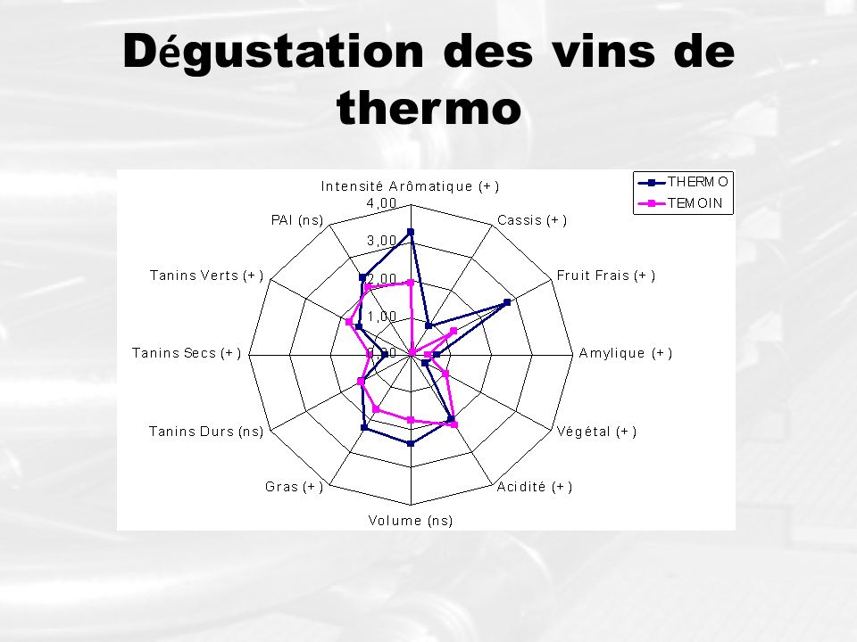 Dégustation des vins de thermo