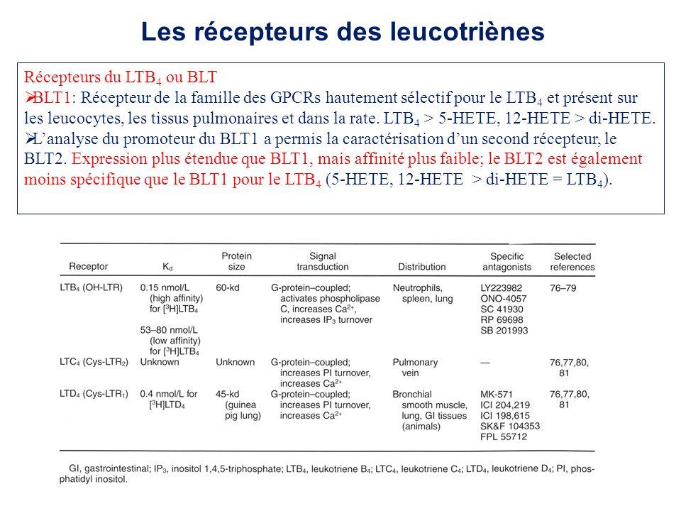 Les récepteurs des leucotriènes