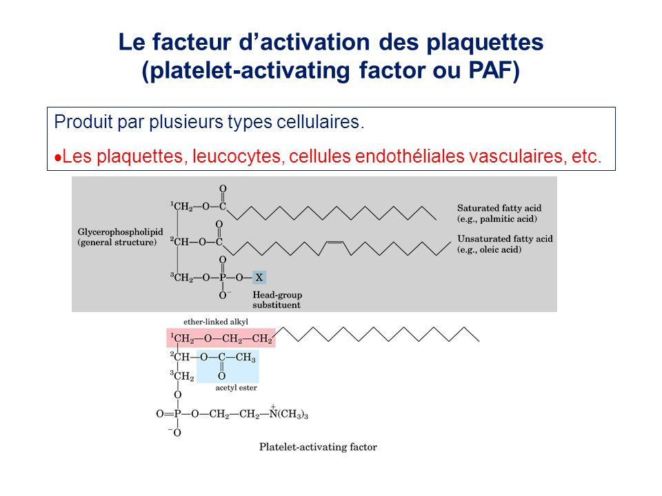 Le facteur d'activation des plaquettes