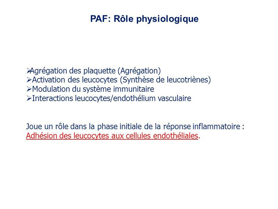 PAF: Rôle physiologique