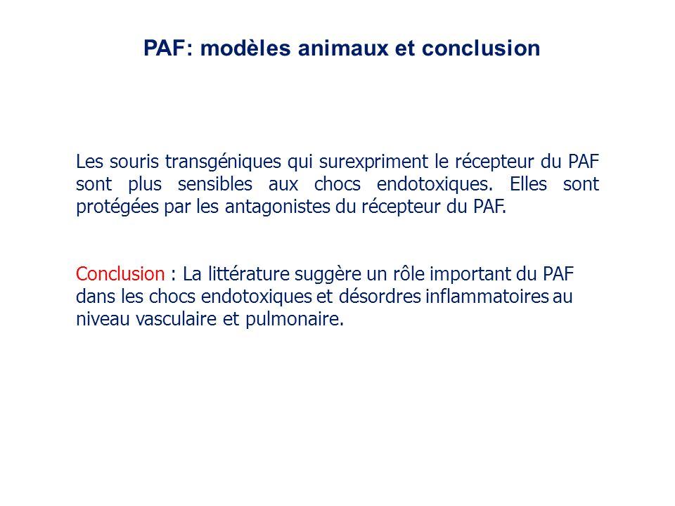 PAF: modèles animaux et conclusion