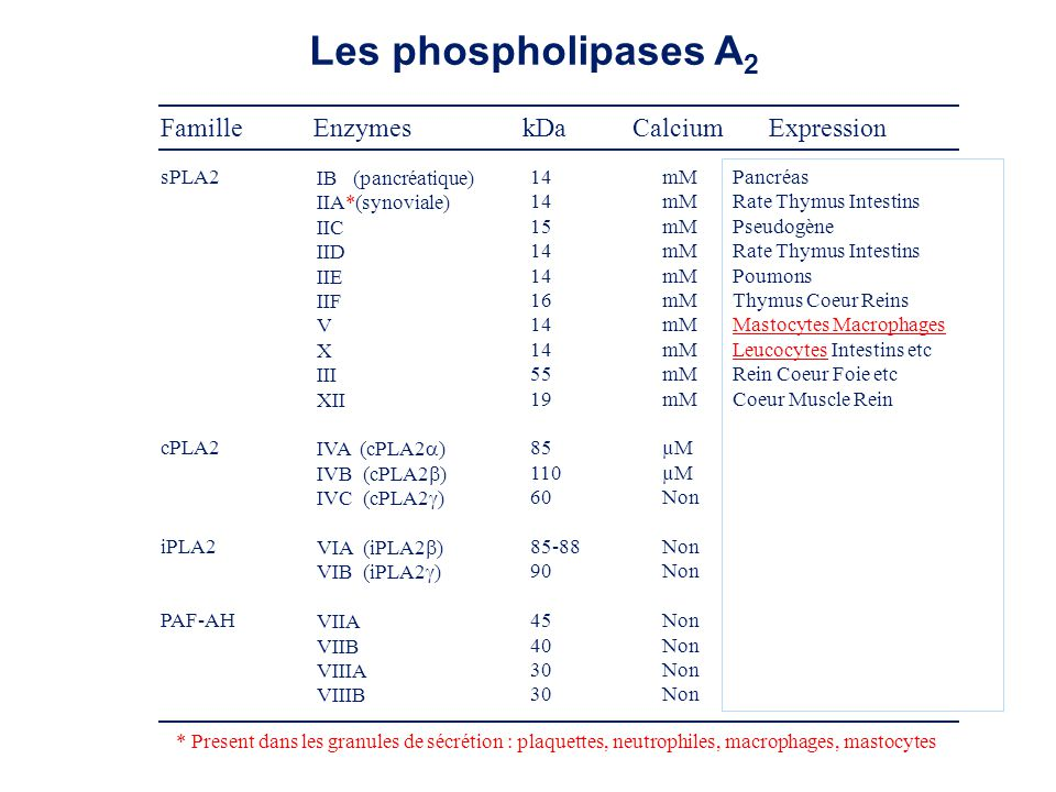 Les phospholipases A2 Famille Enzymes kDa Calcium Expression sPLA2