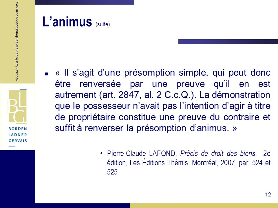 L'animus (suite)