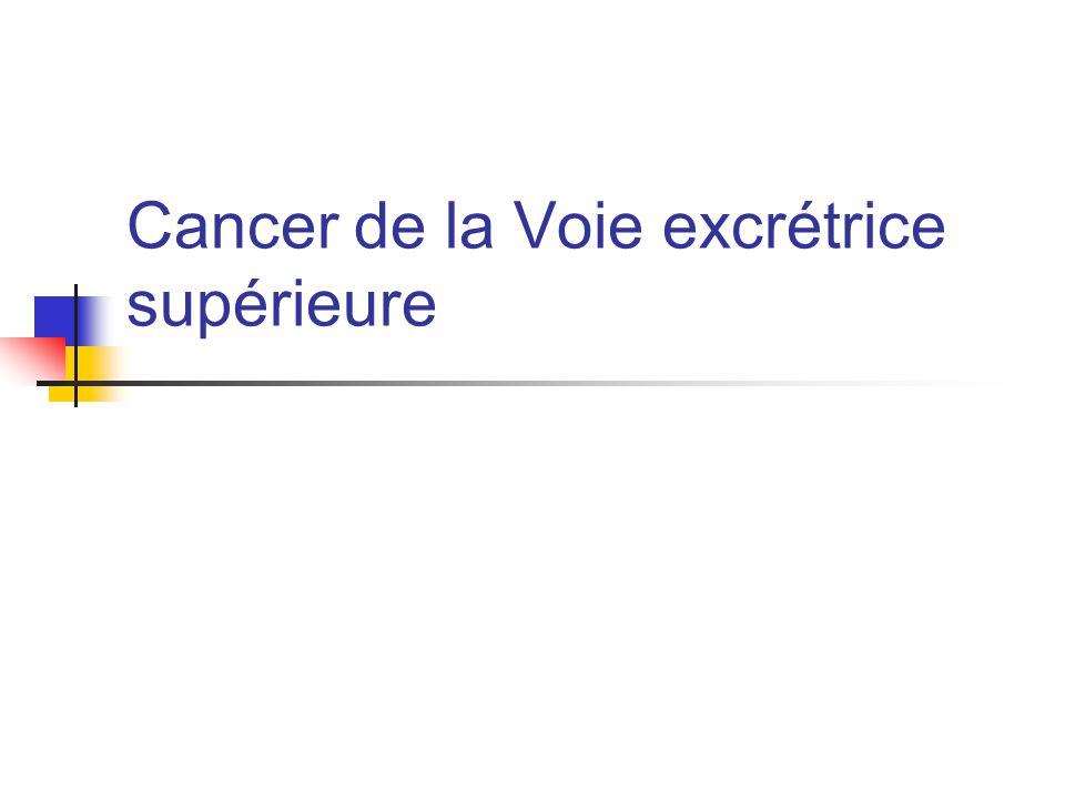 Cancer de la Voie excrétrice supérieure