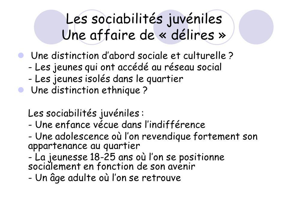 Les sociabilités juvéniles Une affaire de « délires »