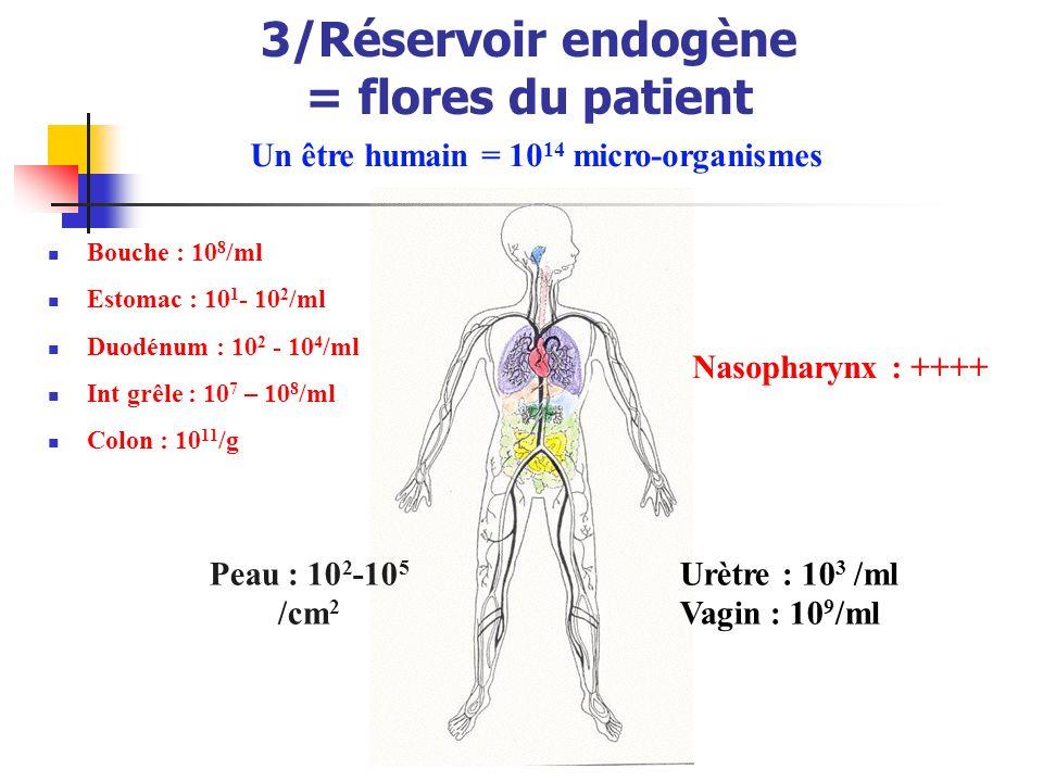 3/Réservoir endogène = flores du patient