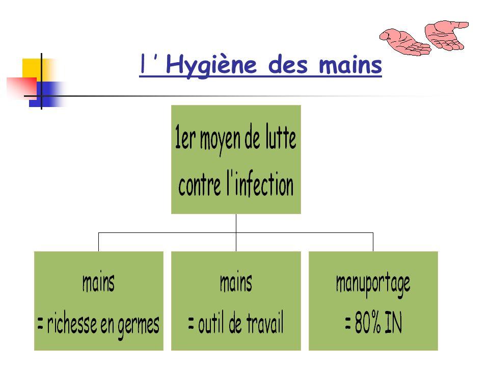 l ' Hygiène des mains