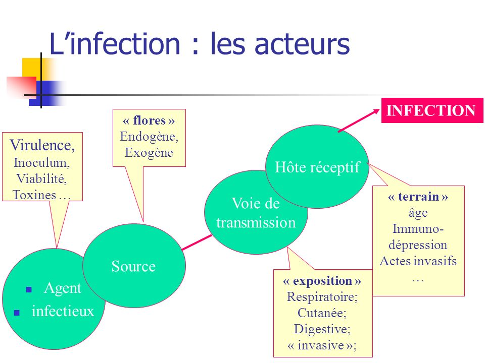 L'infection : les acteurs