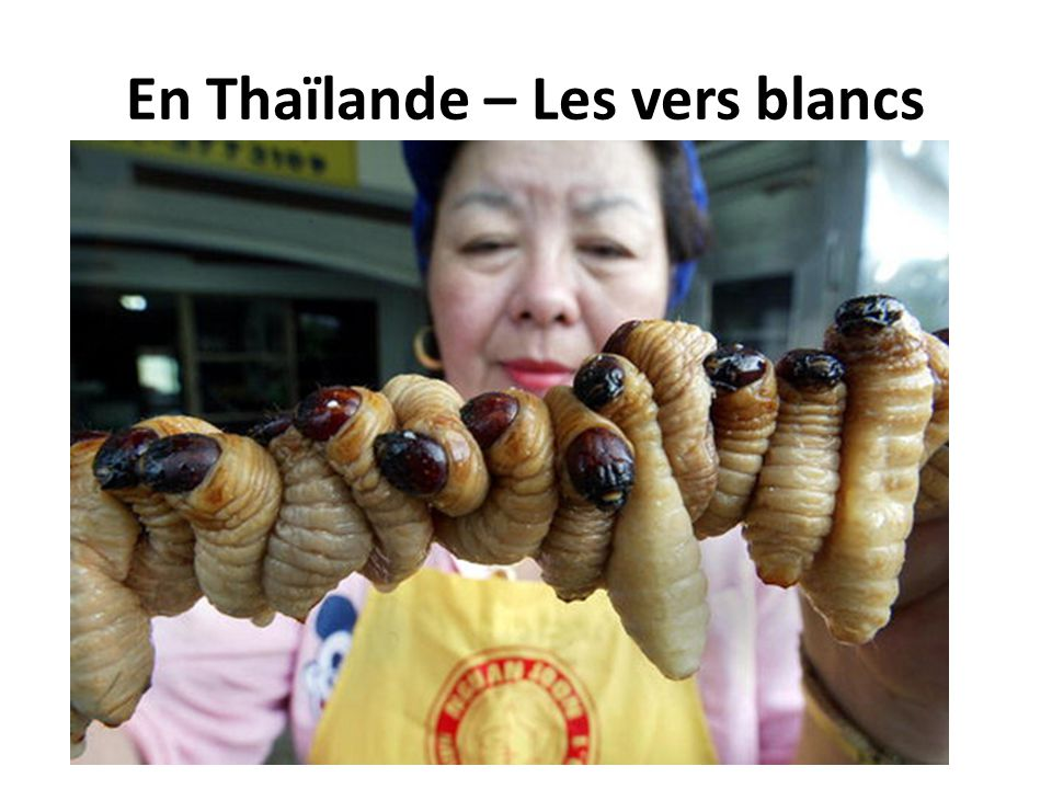 En Thaïlande – Les vers blancs