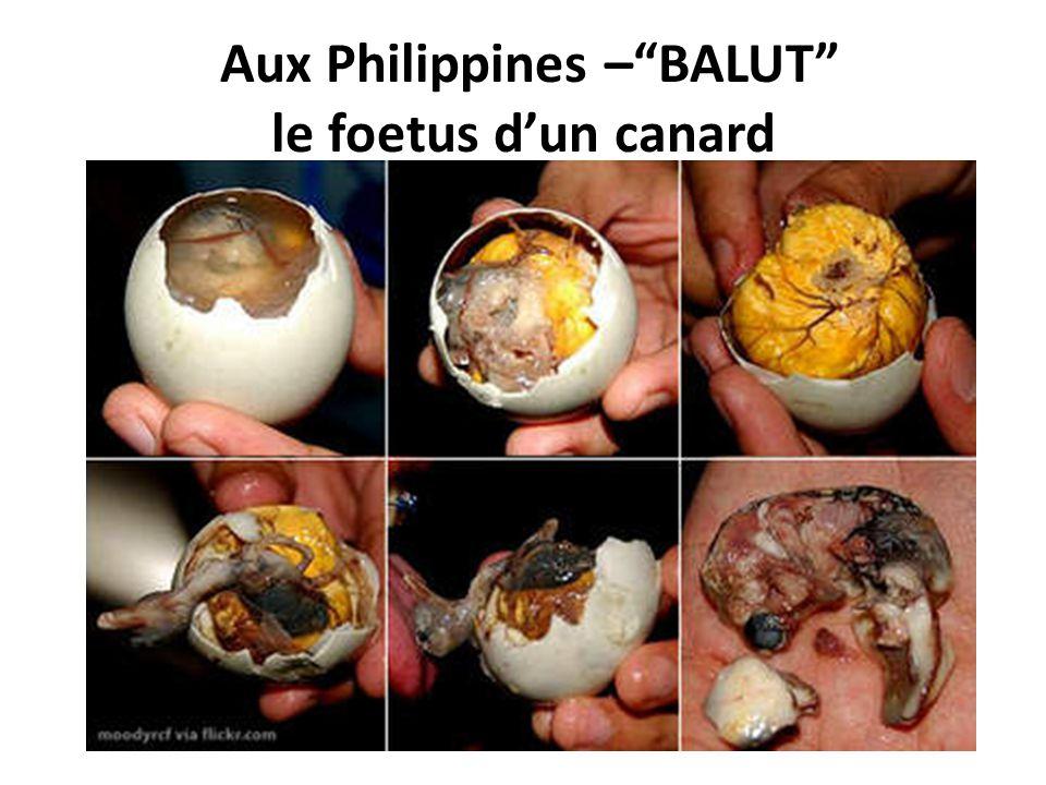 Aux Philippines – BALUT le foetus d'un canard