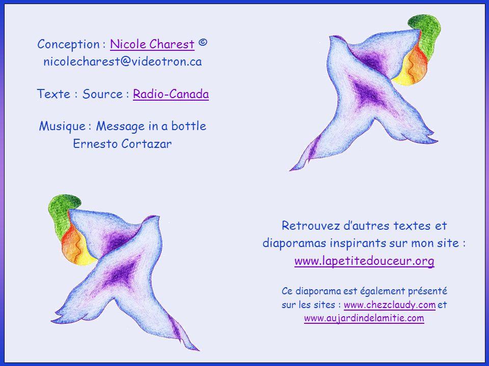 Conception : Nicole Charest © nicolecharest@videotron.ca